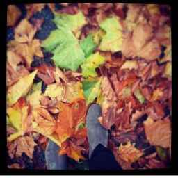 The Ultimate Guide to Enjoying an Amazingly Cosy Autumn Part I